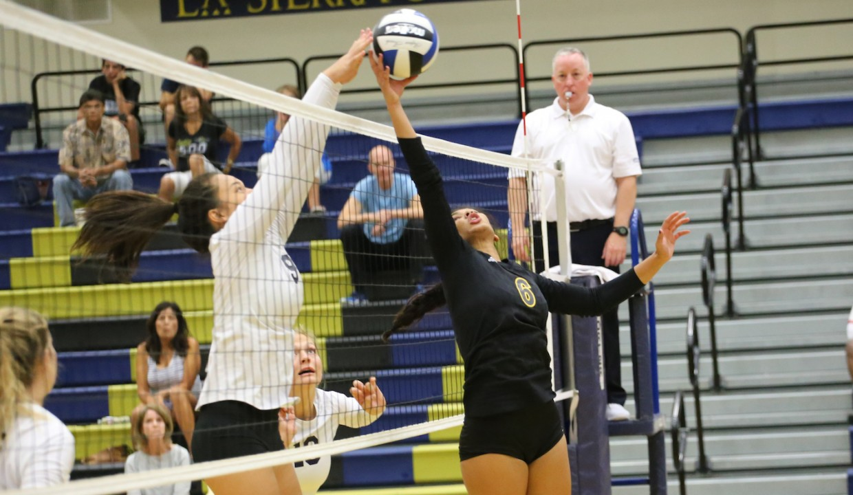 Photo for Volleyball Earns Weekend Split Against ERAU and BenU